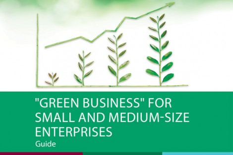 "Guide on ""Green business"" for small and medium-size enterprises, 2017"